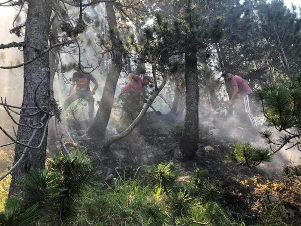 VIDEO-FOTO/ Të rinjtë vullnetarë kuksianë izolojnë zjarrin e rënë në Gjallicë