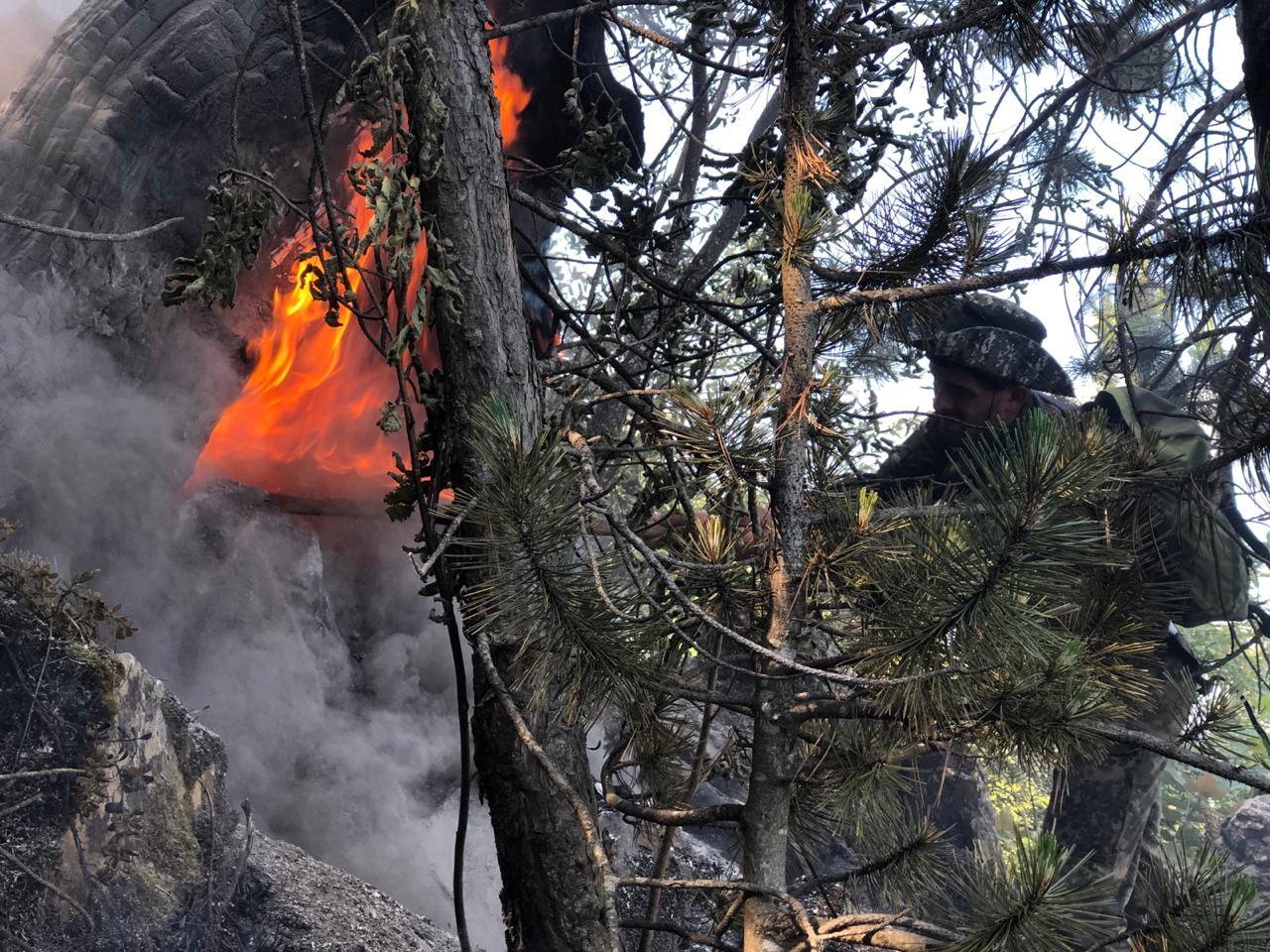 VIDEO/ Të rinjtë kuksianë vazhdojnë aksionin për shuarjen e zjarrit në Gjallicë